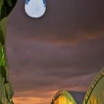 Esfera de Helio con Iluminacion Inflable Publicitaria